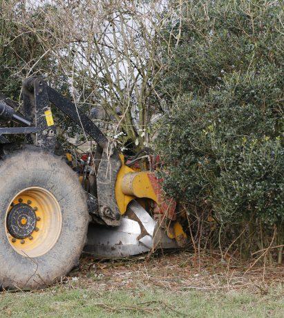 Circulaire verplanting Elzenhof Gemeente Harderwijk